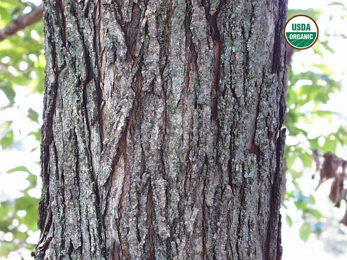 Dog Slippery Elm Bark All Natural